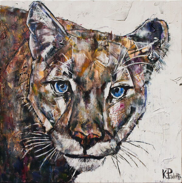 Mountain Lion painting. This original art of the western cougar Aspen who lived at Grandfather Mountain. The wild big cat has blue eyes by artist Kent Paulette..